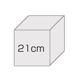 オーダーキャラデコ【21cm】